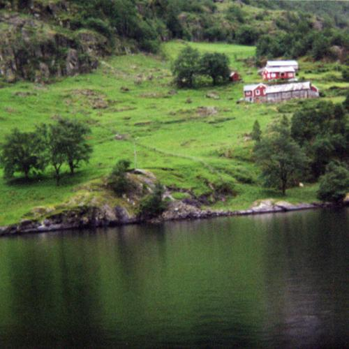 Farm on the Nærøyfjord Near Gudvangen, July 2001