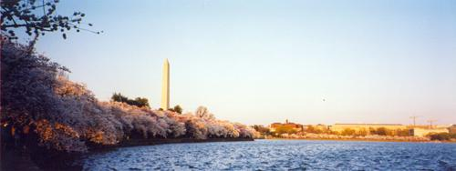 Washington Monument, April 2004