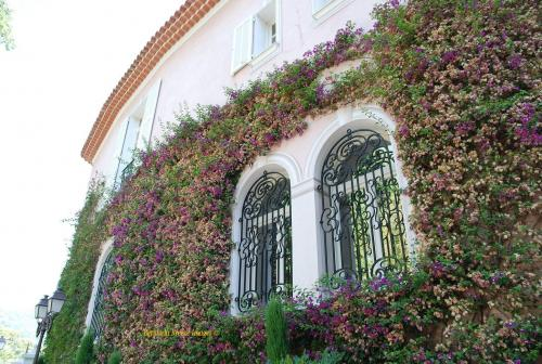 David Niven S House In Nice France Virtual Globetrotting