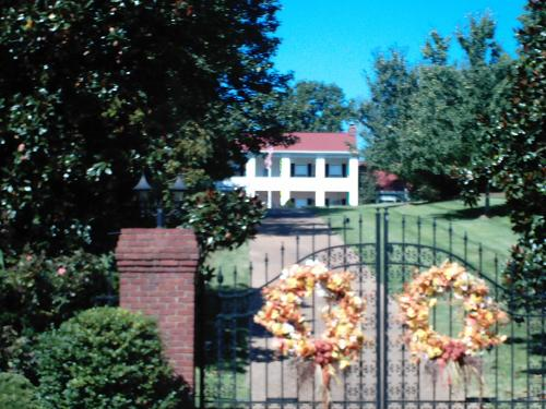 Dolly Parton's House
