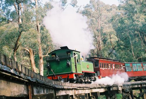 Puffing Billy on a nearby trestle