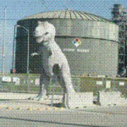 Turkey Point Power Plant T-Rex