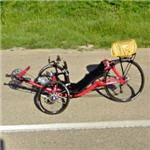 Recumbent tadpole tricycle