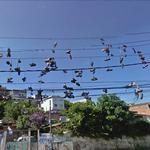 Shoes on power lines
