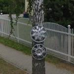 Hubcaps on a tree