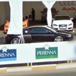2 Audi R8s