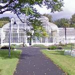 The Curvilinear Range of glasshouses
