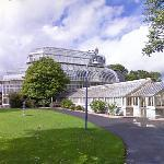 The Palm House (StreetView)