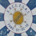 G.R.C.S.E.S. Acadêmicos do Tucuruvi