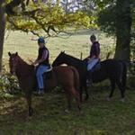 Horse riders (StreetView)