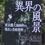 """Views of IKAI"" (StreetView)"