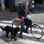 Biking the dog (StreetView)