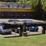 Crocodile carved log (StreetView)