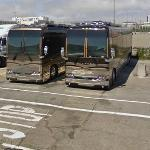 Buses (StreetView)