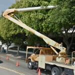 Tree pruning (StreetView)