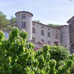 Le château de Vogüé