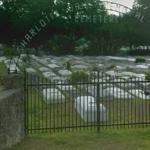 Thriller, the zombies cemetary