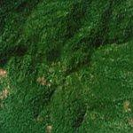 Mount Agou (Highest point of Togo) (Google Maps)