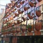 'Organic Building' by Gaetano Pesce