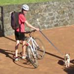Cyclist with his dog