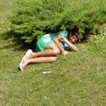 Hiding under a bush
