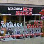 Niagara IceDogs office