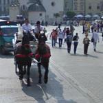Horses (StreetView)