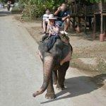 Elephant Riding (StreetView)