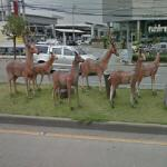Deer sculptures (StreetView)