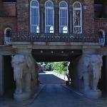 Elephant Portal