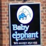 Baby elephant (StreetView)