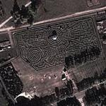 Europe's biggest hedge maze