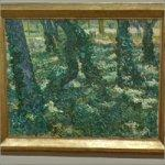 'Undergrowth' by Vincent van Gogh