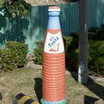 Giant Fanta Bottle