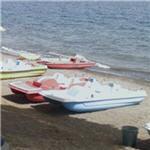 Paddleboat rental