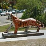 Tiger Statue (StreetView)
