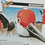 U-Haul #107 - Mississippi