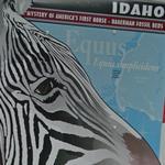 U-Haul #110 - Idaho