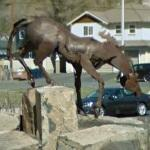 'Bueno Homage to the Buckaroo' by Danae Miller (StreetView)