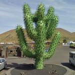 'Cactus' by César Manrique (StreetView)