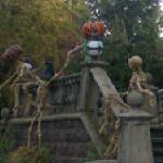 Halloween Skeletons (StreetView)