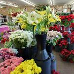 Allen's Flowers