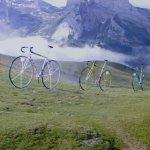 Giant Bicycles (StreetView)