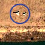 Iraqi Fighter Hidden on Riverbank (Google Maps)