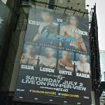 UFC 132 poster