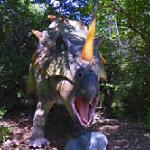 Styracosaurus (StreetView)