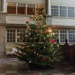 Danish Christmas tree (StreetView)
