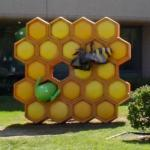 Android in a honeycomb