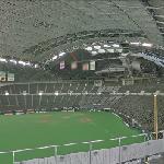 Sapporo Dome (StreetView)