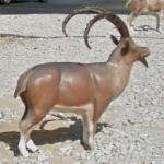 Nubian ibex sculptures